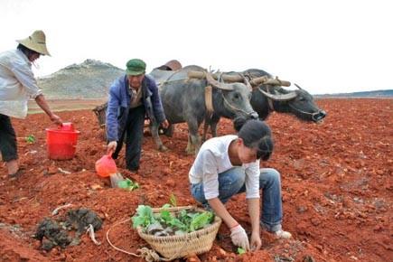 La province du Yunnan, dans le sud-ouest de... (Photo: Isabelle Ducas, collaboration spéciale La Presse)
