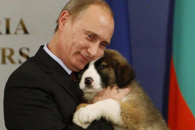 Le premier ministre russe, Vladimir Poutine, a reçu... (Photo: Reuters)