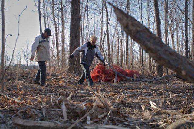Des arbres ont été abattus au parc-nature de... (Photo: Ivanoh Demers, La Presse)