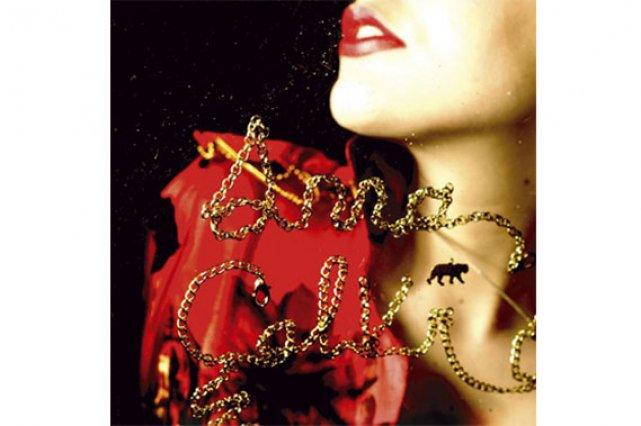 Pochette cd de Anna Calvi...