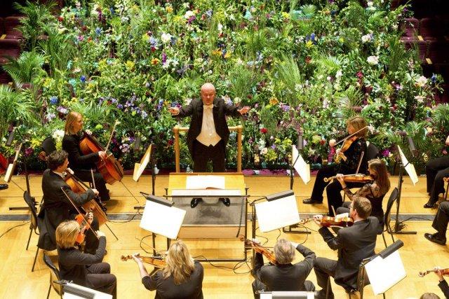 le royal philharmonic joue pour faire pousser les plantes musique classique. Black Bedroom Furniture Sets. Home Design Ideas
