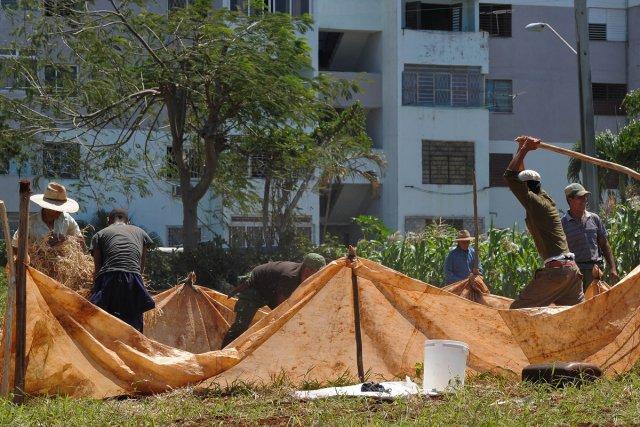 Des fermiers à l'oeuvre à La Havane.... (Photo: AFP)