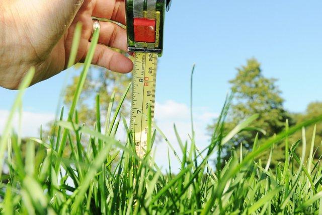 Gazon ne coupez pas trop court gilles angers habitation for Service de tonte de pelouse