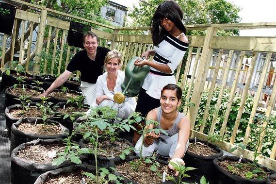 Mission jardins urbains le pignon bleu a son potager sur for Entretien jardin queven