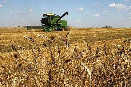 L'agriculture étend son champ d'action, notamment à laprotection... (Photothèque Le Soleil)