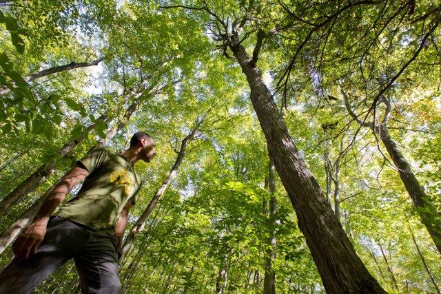 Les écologistes comme Jean-Patrick Toussaint, de la Fondation... (Photo: Ivanoh Demers, La Presse)