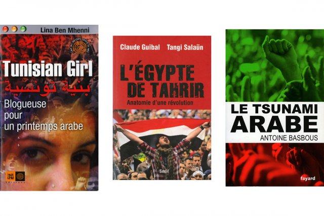 Tunisian Girl, Blogueuse pour un printemps arabe, Lina Ben Mhenni...
