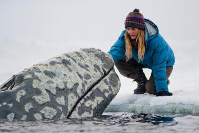 Drew Barrymore incarne  une militante de Greenpeace... (Universal)
