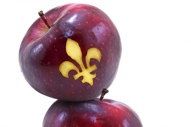 Le Québec fait déjà partie des pays où les droits de scolarité sont élevés.... (Photo: La Presse)