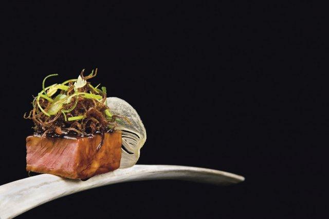 Modernist cuisine la nouvelle bible culinaire ve dumas for Taschen cuisine
