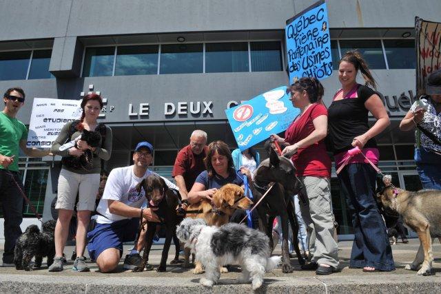 Une cinquantaine de personnes manifestaient devant les locaux... (Le Soleil, Steve Deschênes)