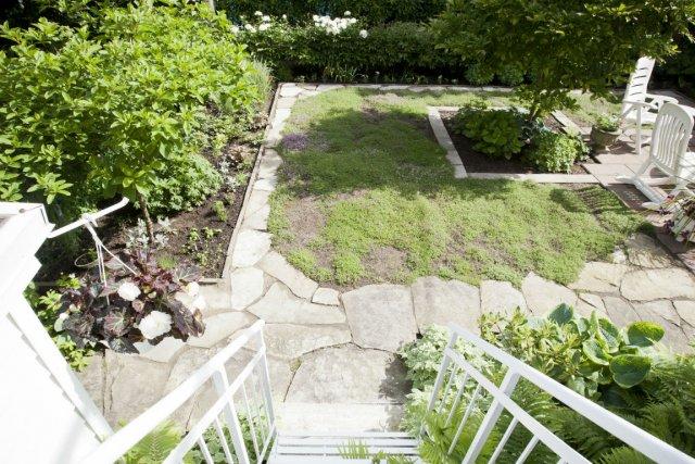 cour colo une pelouse qui sent le thym carole thibaudeau cour et jardin. Black Bedroom Furniture Sets. Home Design Ideas
