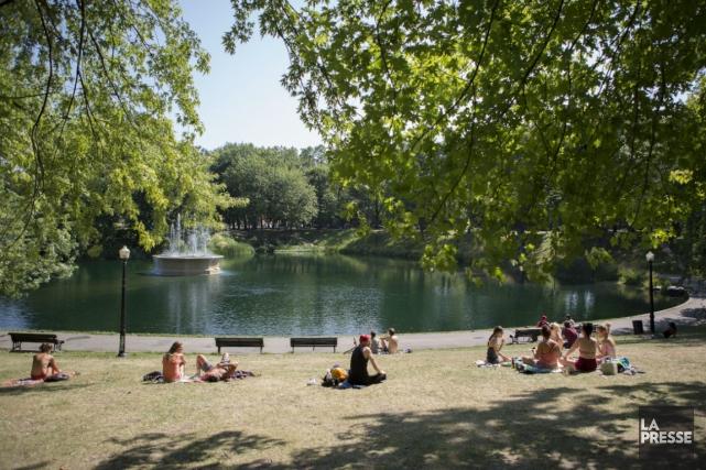 Scène de chaleur estivale au Parc Lafontaine.... (PHOTO OLIVIER PONTBRIAND, ARCHIVES LA PRESSE)