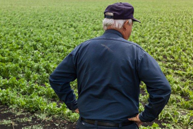 Les producteurs agricoles souffrent davantage de détresse psychologique... (Photo: Archives La Presse)