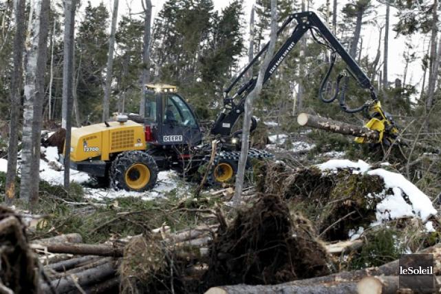 Alarmée par l'état de l'industrie forestière québécoise, une coalition... (Photothèque Le Soleil)