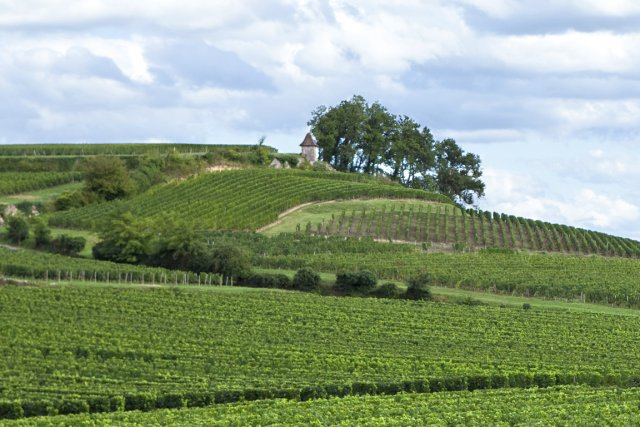 Le village de Saint-Emilion produit l'un des vins... (Photo RelaxNews)
