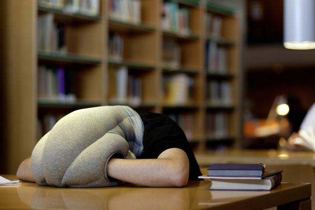 oreiller autruche Un «oreiller autruche» pour faire des siestes où on veut, quand on  oreiller autruche