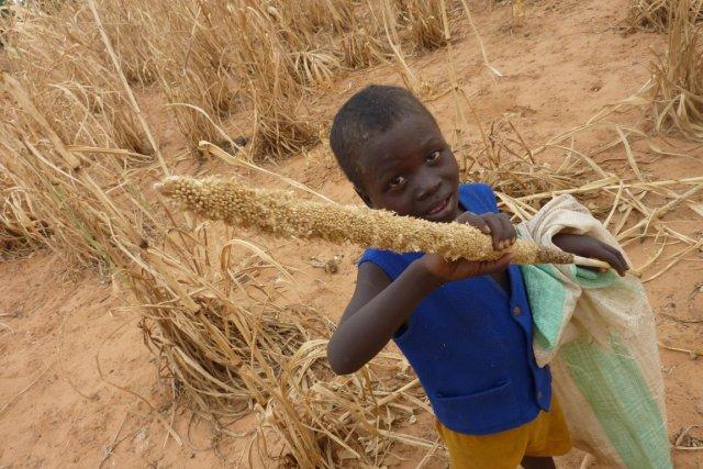 La faim a reculé dans le monde, sauf en Afrique où elle a augmenté,  touchant... (Photo: BOUREIMA HAMA, AFP)