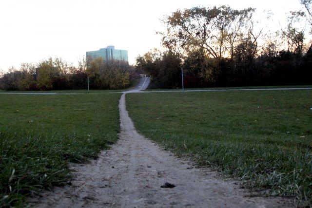 Lundi dernier, près de la piste cyclable derrière... (Photo Étienne Ranger, Le Droit)