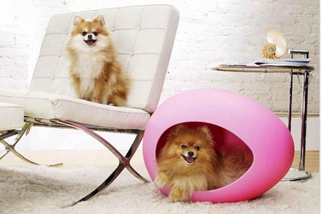 Ce petit oeuf pEi Pod changera littéralement l'ambiance... (Photo tirée du site www.facebook.com/boxxdog)