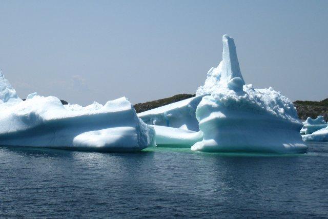 C'est un peu comme si le béluga vu dans le port de Montréal le mois dernier... (Photo archives La Presse)