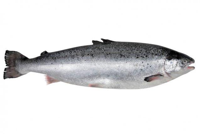 Mangez-vous du saumon parce qu'il contient des omega-3?...
