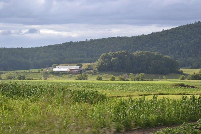 Le Vermont partage avec le sud des Cantons-de-l'Est... (photo archives la Presse)