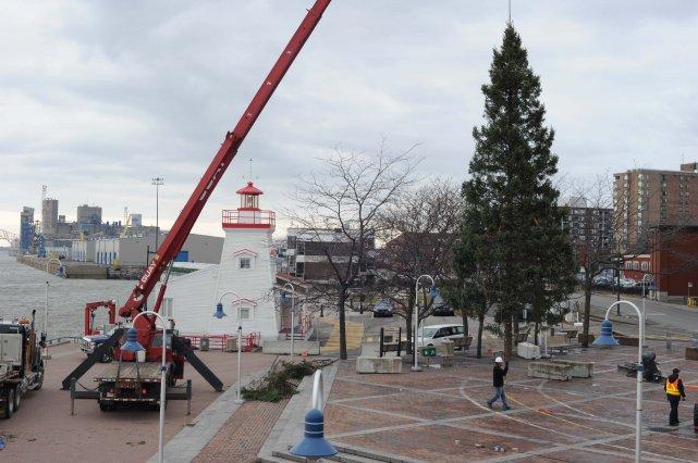 Le sapin de Noël a été installé, hier,... (Photo: Sylvain Mayer)