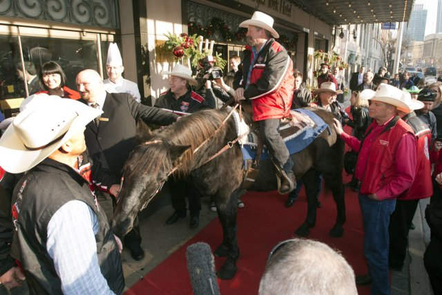 Marty le cheval, la mascotte des Stampeders de... (Photo: PC)