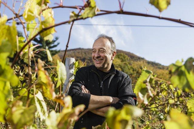 Propriétaire d'un vignoble à Mont-Saint-Hilaire, Marcel Leboeuf veut... (PHOTO ULYSSE LEMERISE, COLLABORATION SPÉCIALE)