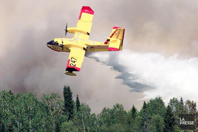 Le nombre d'incendies semble diminuer dans la forêt... (Photothèque La Presse)
