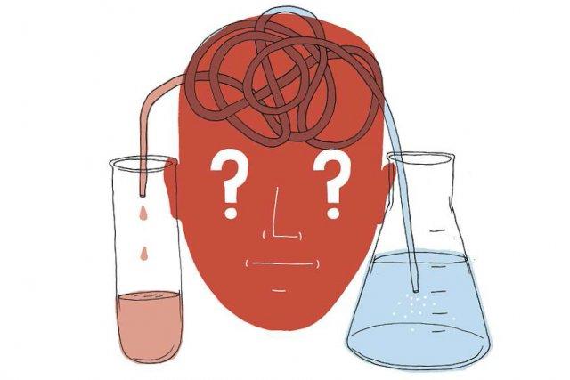 La vulgarisation scientifique se porte bien au Québec, avec la revue Québec... (Illustration: Charlotte Demers-Labrecque, La Presse)