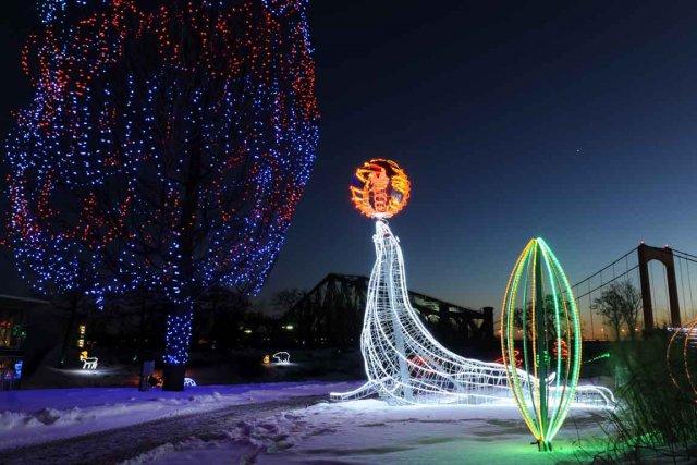 L'Aquarium de Québec propose pour une cinquième année... (Photo Steve Deschênes)