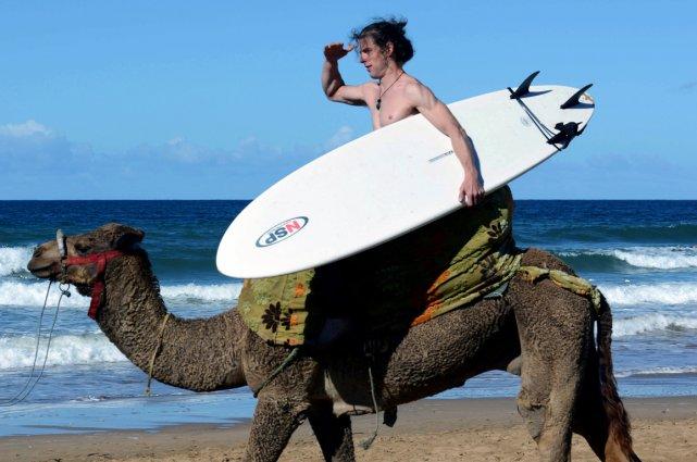 La boite à Cancans ... ( sans blabla ) - Page 8 629104-surfeur-dos-chameau-plage-taghazout