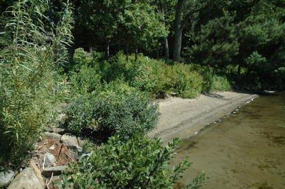 La végétalisation des bandes riveraines laisse encore à désirer le long des... (Archives La Tribune)