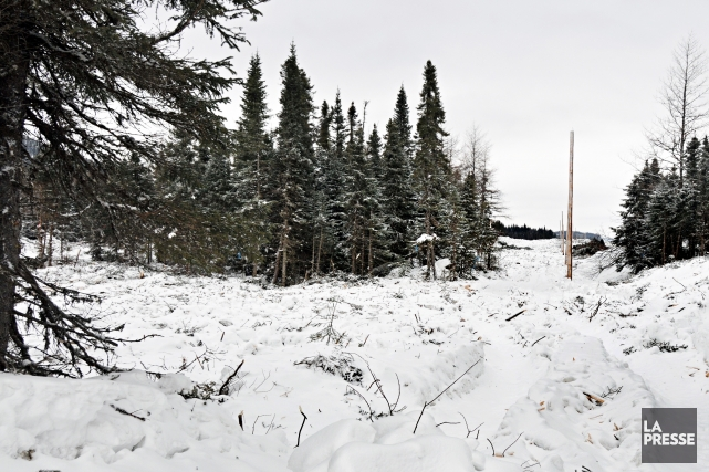 Même si les autorisations officielles du gouvernement du Québec ne sont pas... (Photo archives)