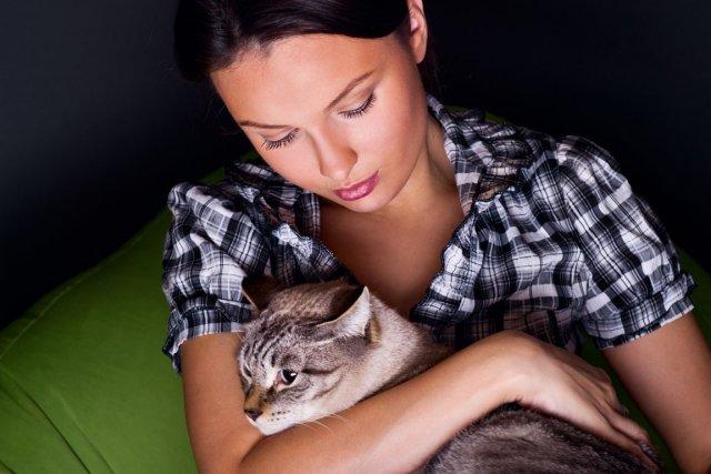 La Nouvelle-Zélande compte une proportion de chats domestiques... (Photo : Relaxnews)