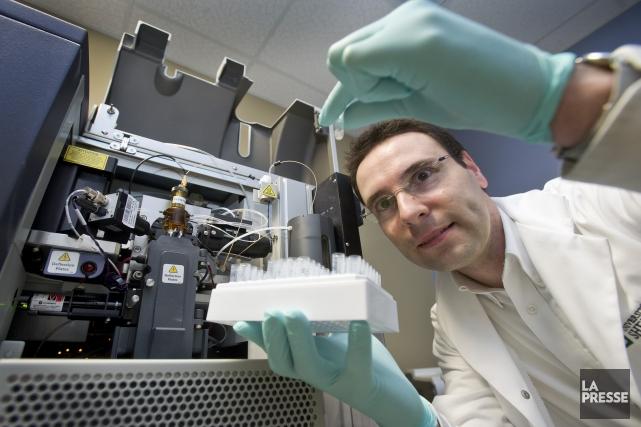 Le professeur-chercheur Martin Richter s'intéresse au développement de... (Imacom, Jocelyn Riendeau)