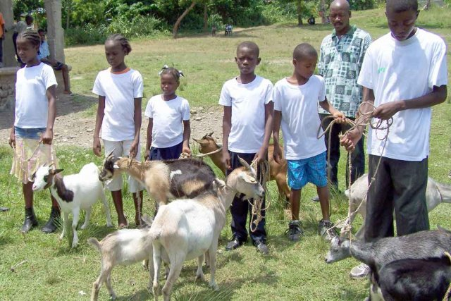 Depuis trois ans, les enfants du Village de... (Photo collaboration spéciale Yves Therrien)
