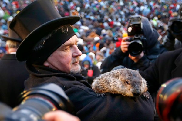 La marmotte Fred ne s'entend pas avec ses... (ASSOCIATED PRESS)