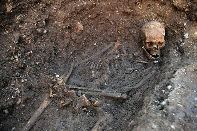 Le squelette de Richard III.... (Photo: REUTERS/University of Leicester)
