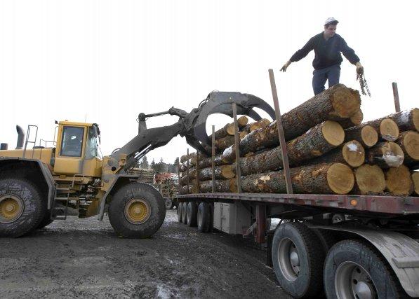 Produits forestiers Résolu devra respecter l'ordre d'ancienneté des ... (Archives La Presse)
