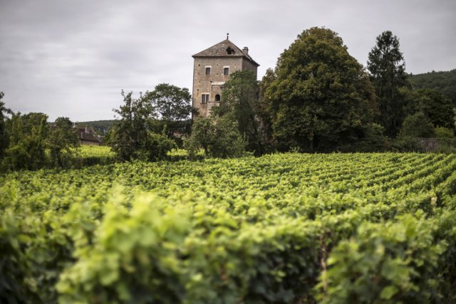 Le château de Gevrey Chambertin, en Bourgogne.... (Photo Jeff Pachoud, AFP)
