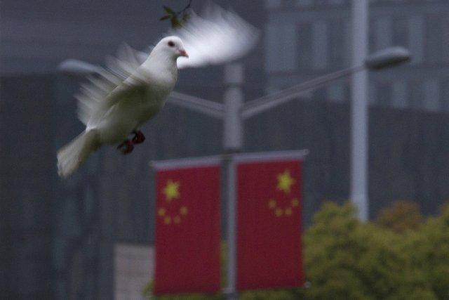 Pour l'Organisation mondiale de la Santé, l'origine de... (Photo : Aly Song, Reuters)