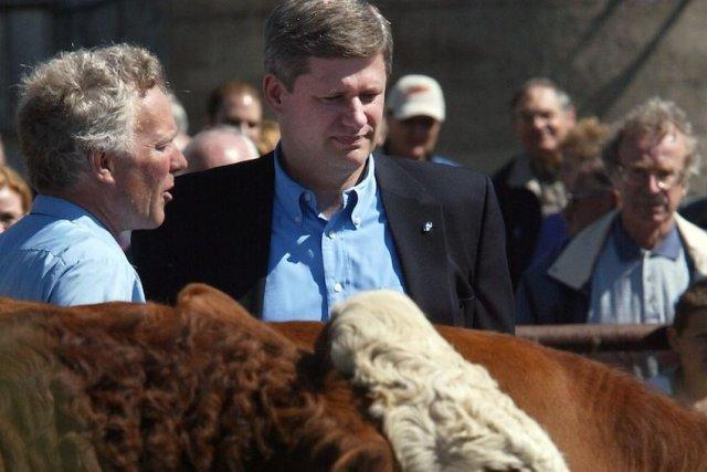 Le premier ministre Stephen Harper, lors de la... (PHOTO Jonathan Hayward, PC)