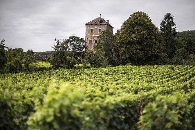 Les vignerons français ciblent les marchés émergents comme... (Photo Jeff Pachoud, AFP)