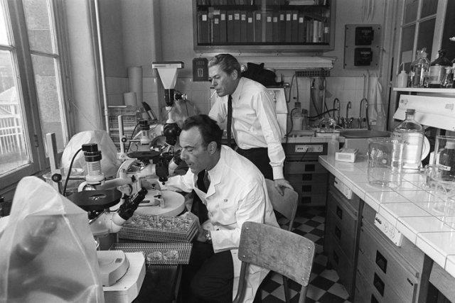 François Jacob (à gauche) dans son laboratoire à... (Photo: AFP)