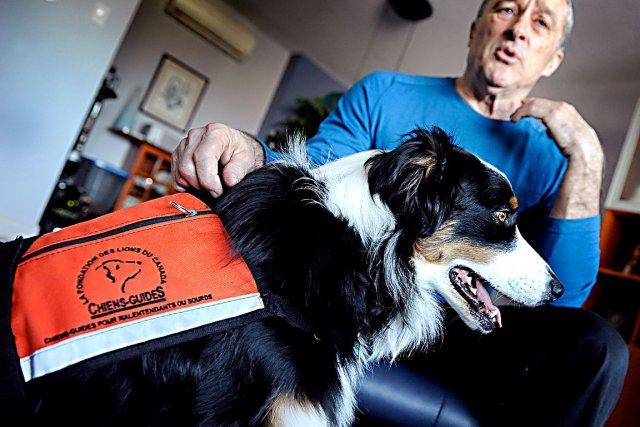 Robert Delarosbil et son chien d'assistance Christina... (Photothèque Le Soleil, Patrice Laroche)