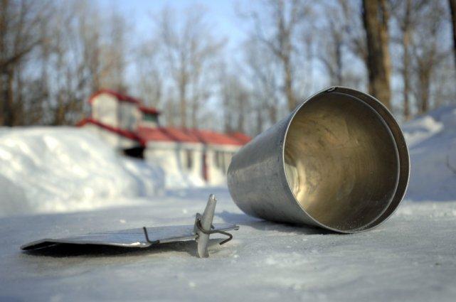 Une érablière au Québec.... (Photo Martin Tremblay, La Presse)