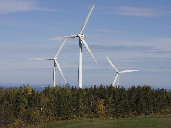 Un parc d'éoliennes à Saint-Ulric en Gaspésie.... (Photo André Pichette, La Presse)